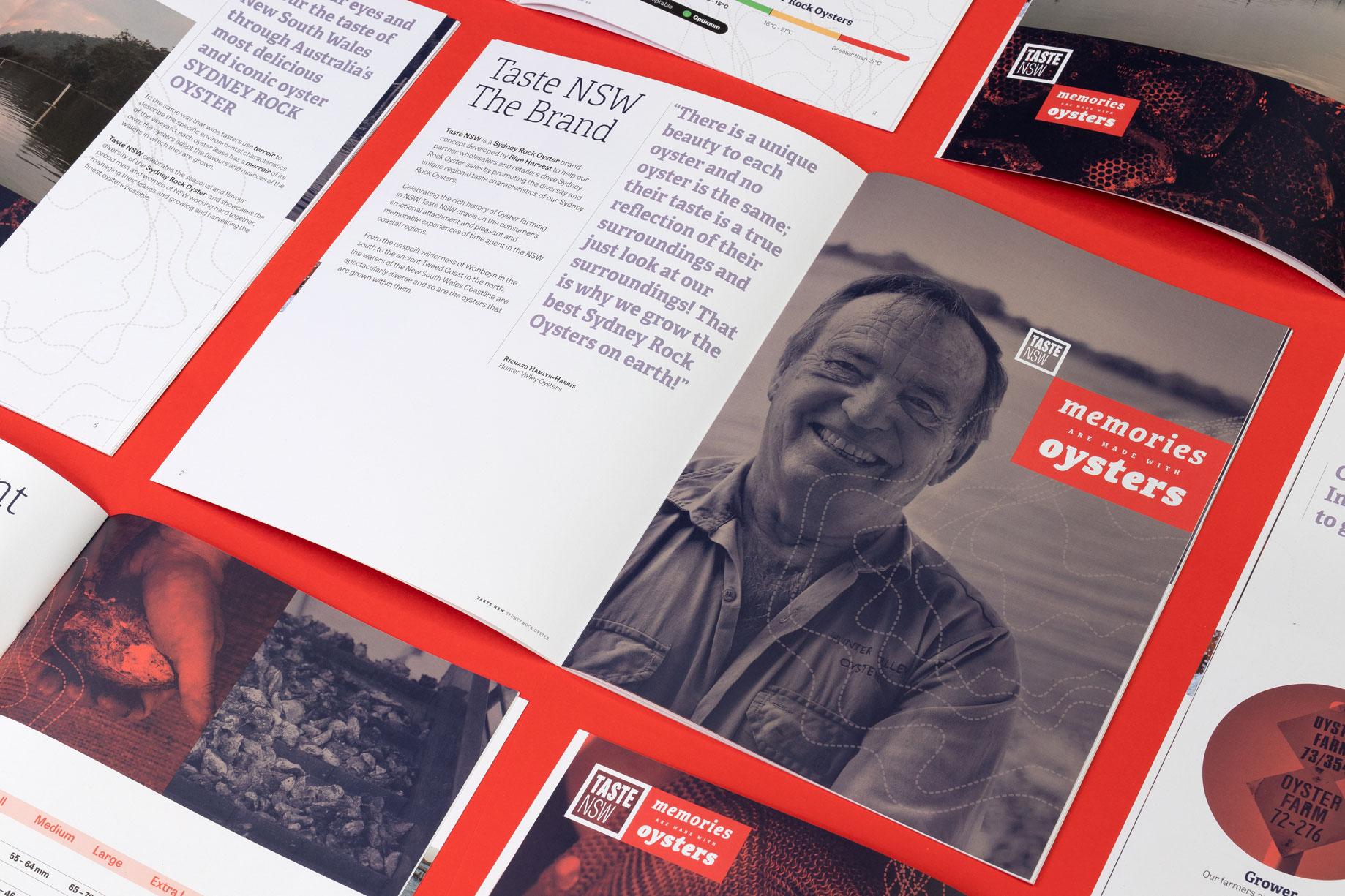 Taste NSW Australia branding logo design corporate identity sales material graphic design brochure Vibranding