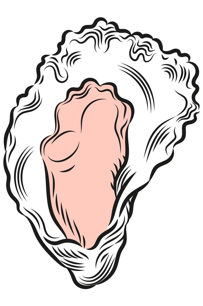Taste NSW Australia branding diseño de logo identidad corporativa material comercial diseño gráfico ilustración Vibranding