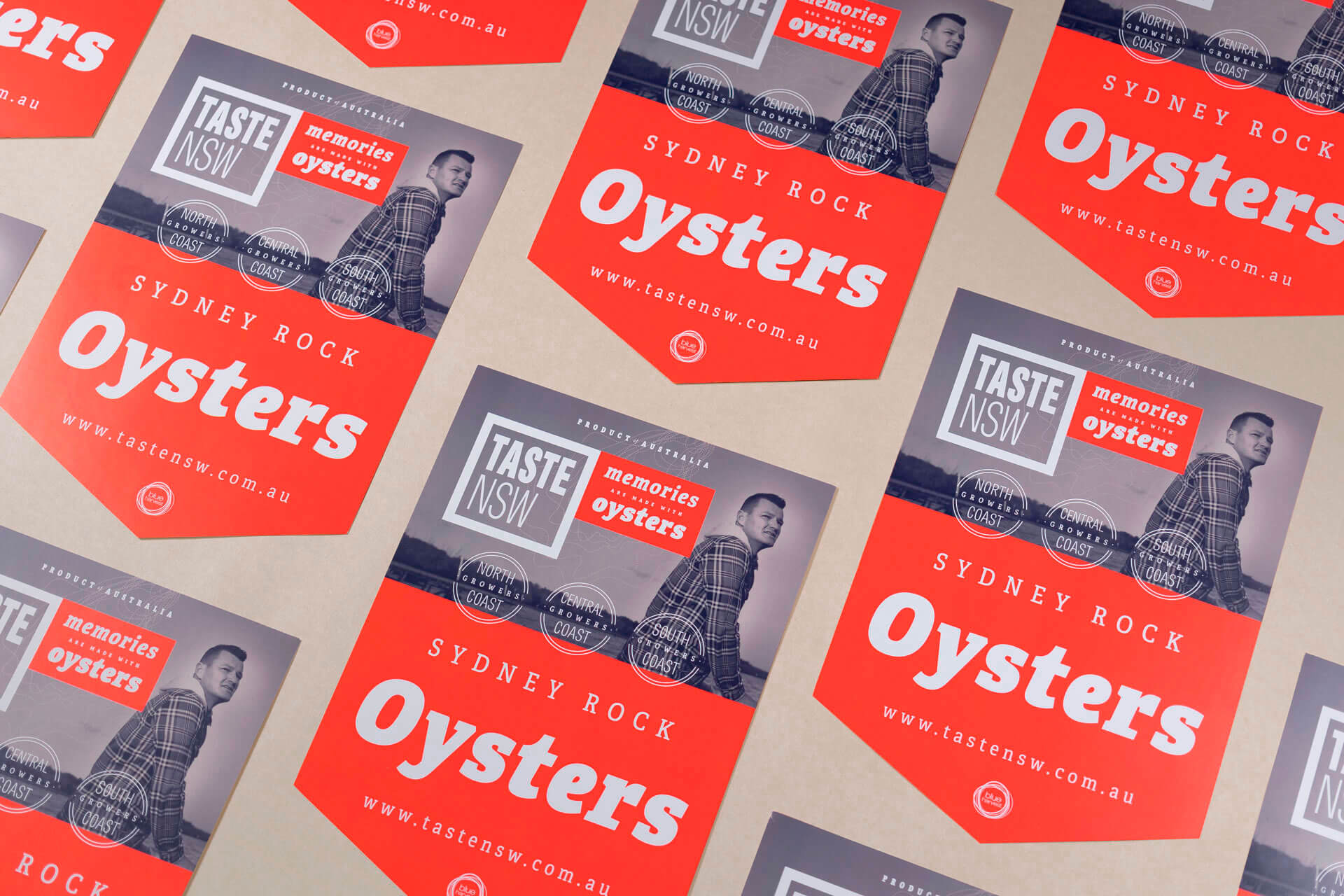 Taste NSW Australia branding logo design corporate identity sales material graphic design sticker Vibranding