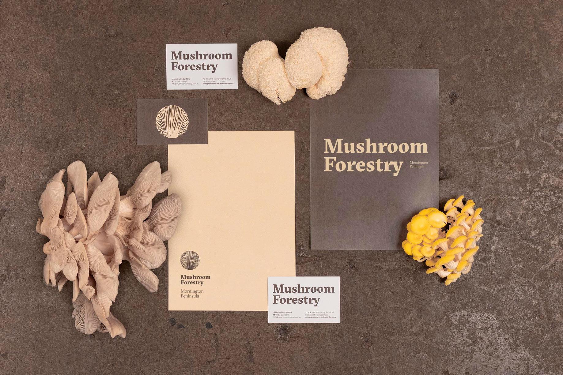 Mushroom Forestry identidad corporativa diseño de logotipo branding setas ecológicas alimentación foodie packaging Australia Vibranding